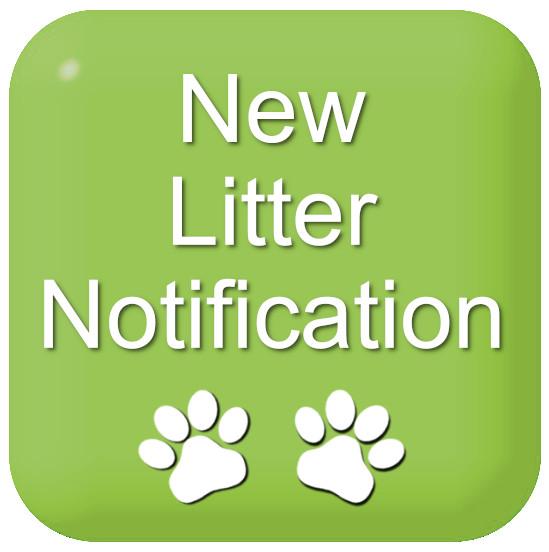 New Litter Notification